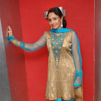 Untitled Gallery | Picture 25053